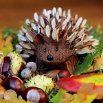 Hedgehog made from natural materials