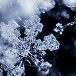 Snowflake extreme close up