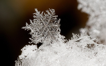 Close Up Snowflake