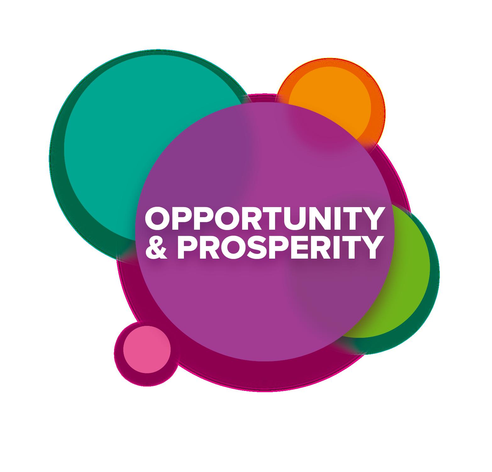 2050 Opportunity and Prosperity logo