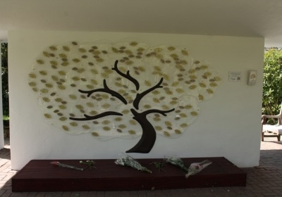 Photo of the Leaves of Life Tree